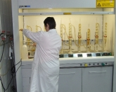 bioteste10